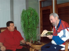 Venezuelan President Hugo Chavez and Cuba's Fidel Castro during their October 14, 2007 meeting in Cuba.