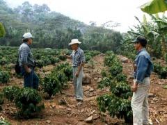 Farmers in Portuguesa state (MINCI).