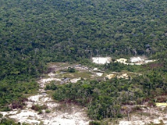 Environmental damage caused by deforestation & mining along the Caura River