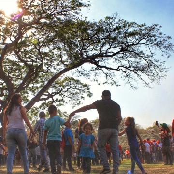 Gathering under the Samán tree