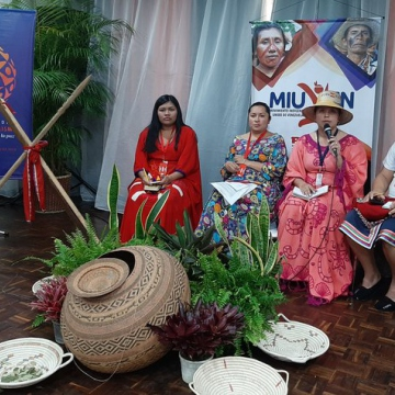 There was also a strong indigenous presence from a range of Latin American countries, including Bolivia, where indigenous sectors have led the counter-coup efforts. (@MINPIOFICIAL / Twitter)