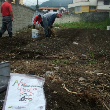 The CIARA also provided us with seeds to start off with (here, coriander seeds), and some tools.