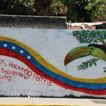 """Lets make a Bolivarian socialist country for the peace."""