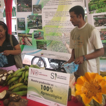 General produce by groups working with the AgroVenezuela mission on ecologically friendly urban agriculture