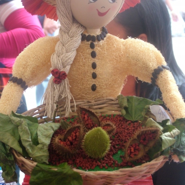 The Commune Francisco de Miranda, Portuguesa state makes dolls made of recycled and natural products, including water and soft-drink bottles, corn leaves, onoto, and tapara (a fruit).