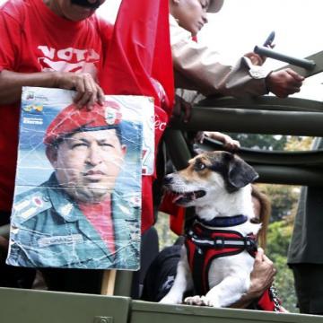 Four-legged Chavistas were also welcome.