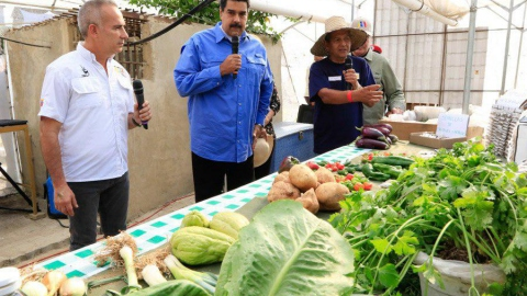 President Maduro and Urban Agriculture Minister Freddy Bernal launch the Plan 2018 (Ministry for Urban Agriculture)