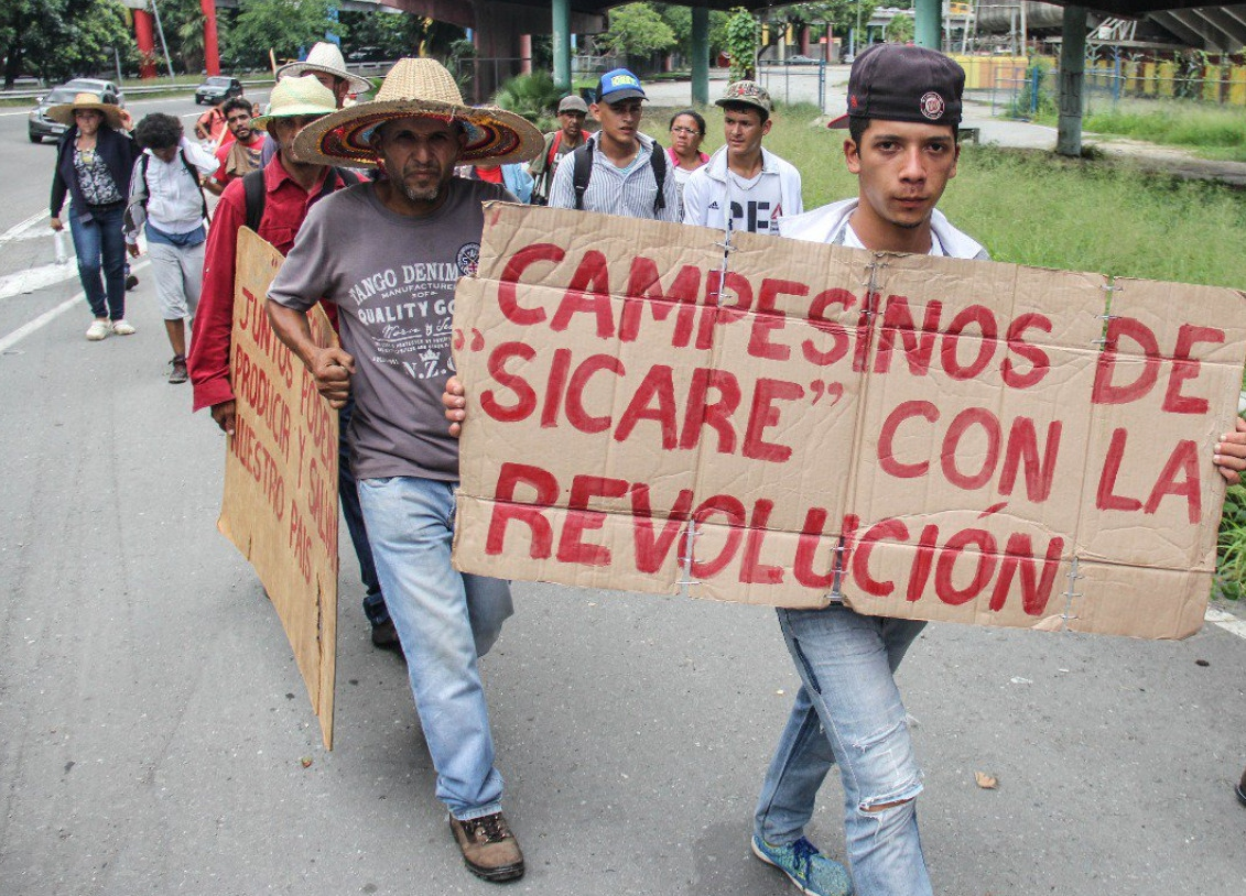 Marchers hold banners and signs express their support for the Bolivarian Revolution.