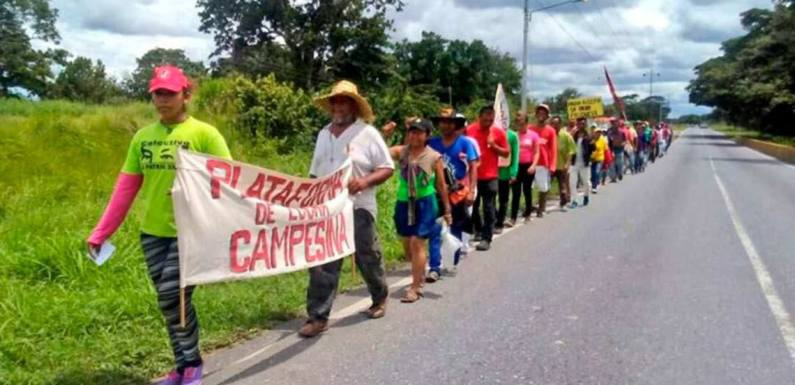 Admirable Campesino March. (Archive)