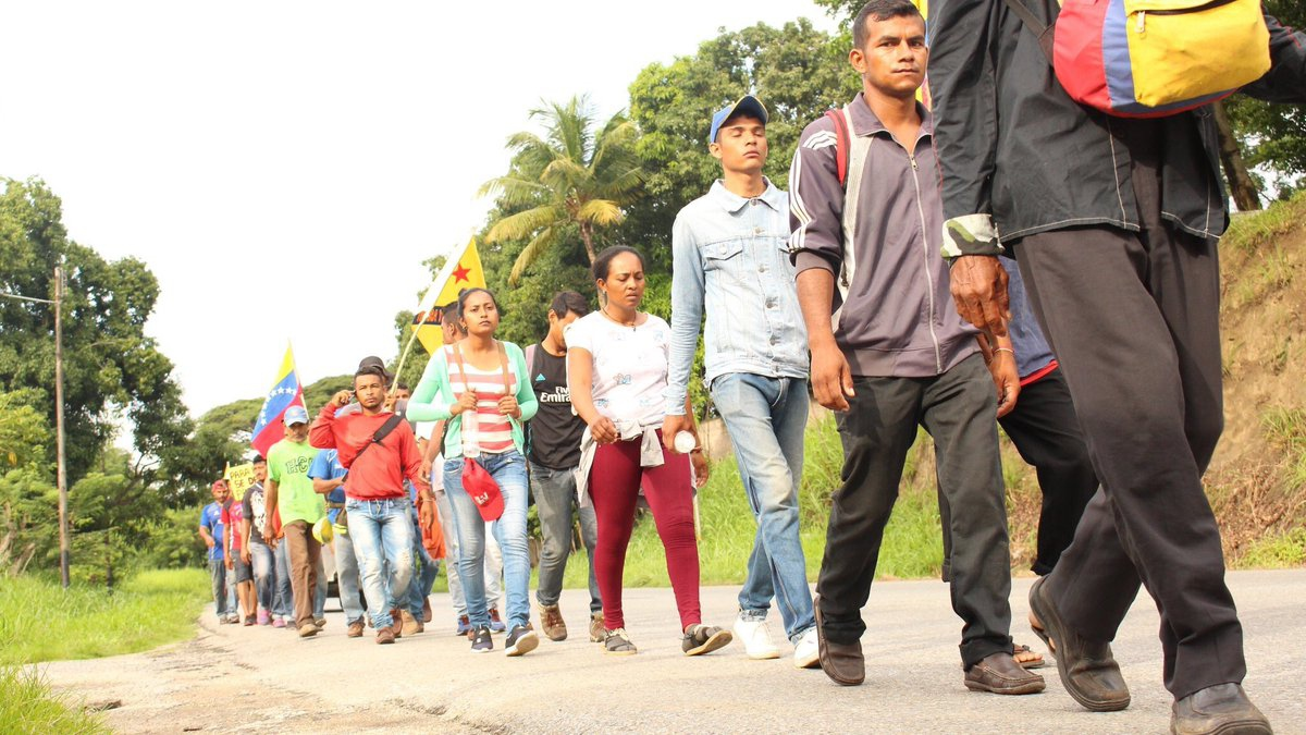 2- The participants from campesino organizations walked more than 400 kilometers in the rain and heat over 20 days to reach their final destination in Caracas.