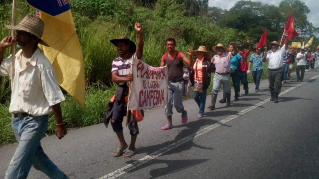 The Admirable Campesino March walked from Portuguesa State to Caracas in July and August 2018 (@Lucha_Campesina / Twitter).