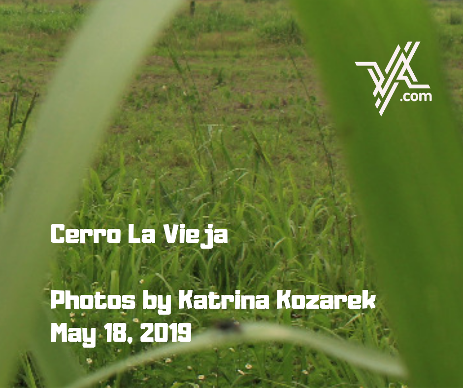 Agricultural production is threatened by mining activities in Lara State. (Katrina Kozarek)