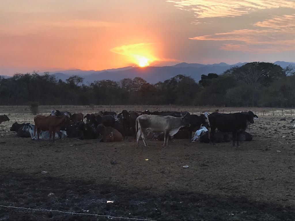 Sunset in El Maizal Commune. (Jota, Terra TV)