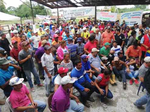 Campesino and community forces led the battle for socialism in 2019. (Gerardo Rojas)