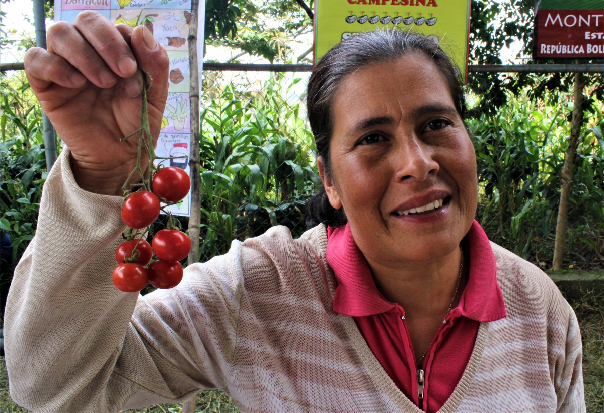Farmer shows off her special variety of cherry tomatoes