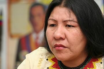 Venezuelan Indigenous Affairs Minister Nicia Maldonado