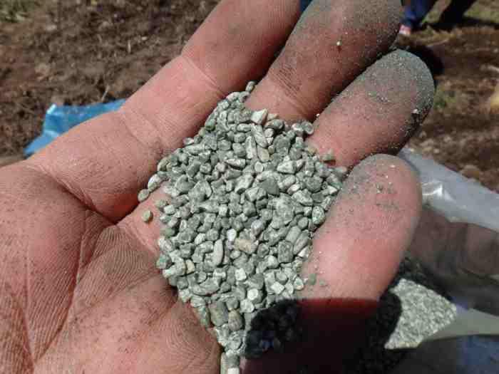 The fertilizer used at La Provincia (Evergreen State College)
