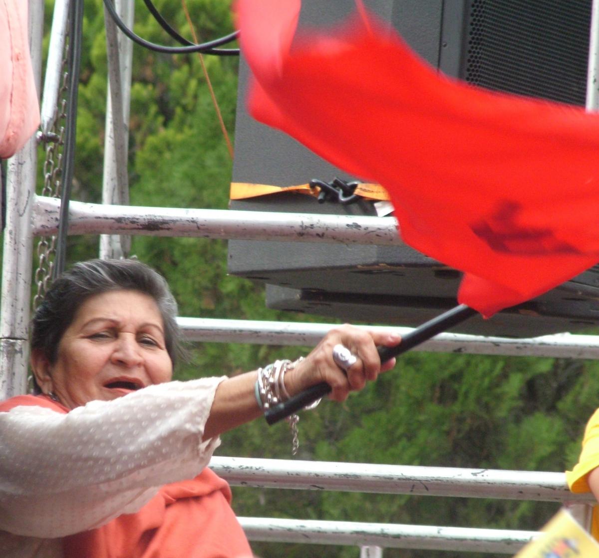 At a recent march in Merida city (Tamara Pearson / Venezuelanalysis.com)