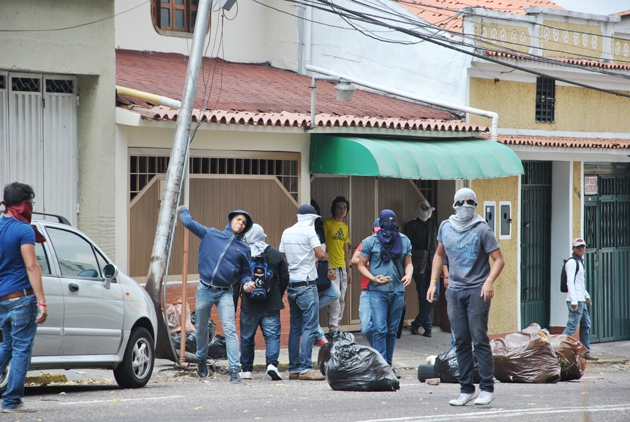 Protesters in Tachira (AVN)