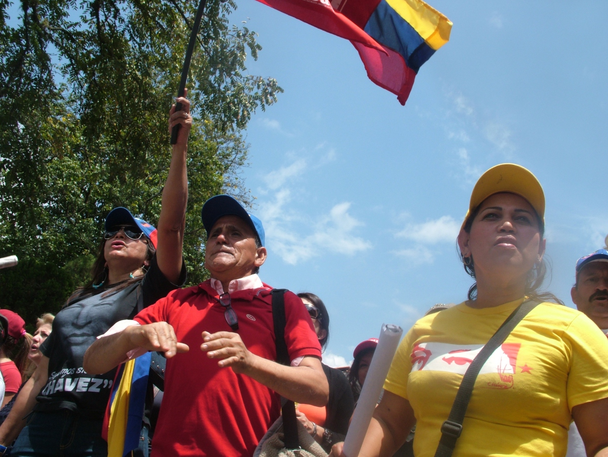 A march in Merida, Venezuela, in February against far right opposition violence (Tamara Pearson /Venezuelanalysis.com)