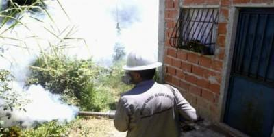 Last week the government launched an intensified national strategy against the mosquito borne diseases, including fumigations and elimination of breeding grounds. (agencies)