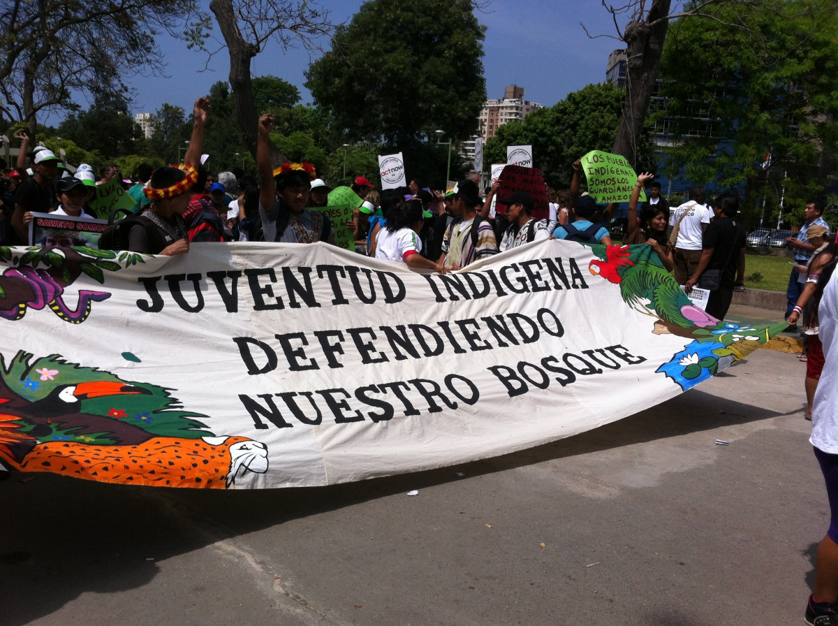 """""""Indigenous Youth Defending our Forrest!"""" Activists largely reject the Reduced Emissions from Deforestation and forest Degradation (REDD) calling them """"false solutions"""" to the climate crisis. (PHOTO: Eli Stogsdill)"""