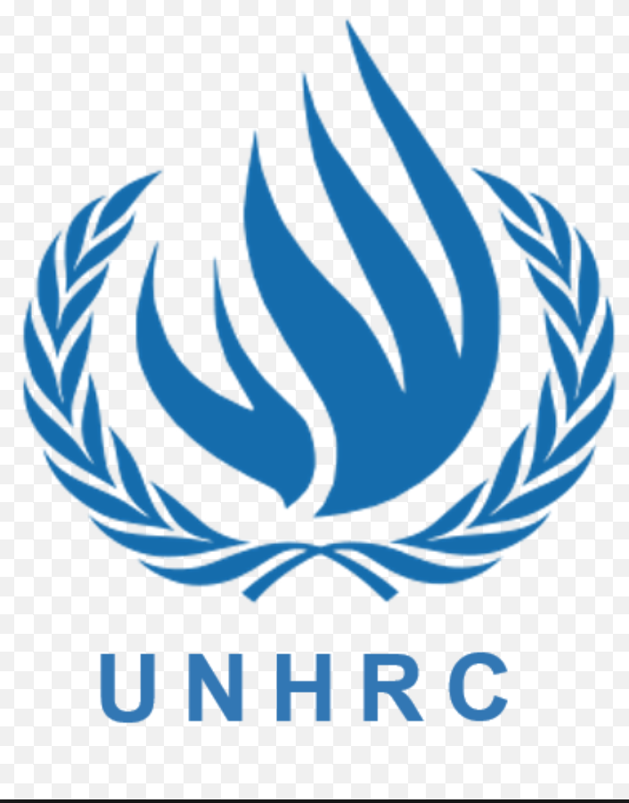 The UN Human Rights Council has been accused of silencing the voices of Venezuelan non-government organisations which contradict the claims of Washington-allied human rights groups (UNHRC)