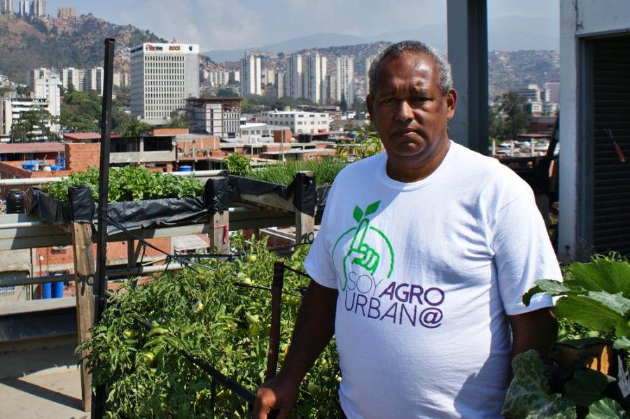 Residents of Venezuela's housing mission take up urban agriculture. (Jonas Holldack/Venezuelanalysis)