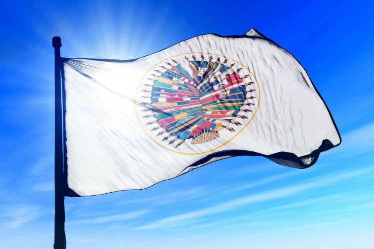 Organization of American States' flag. (Shutterstock/Jiri Flogel)