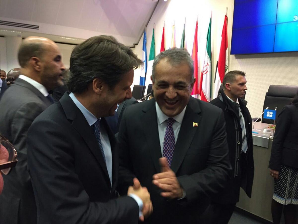 Venezuelan Oil Minister Eulogia del Pino celebrates Wednesday's agreement in Vienna (Euologio del Pino/Twitter).