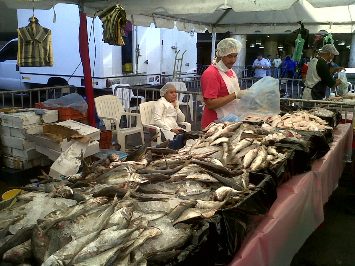 A socialist fish market in Venezuela. (INSOPECA)