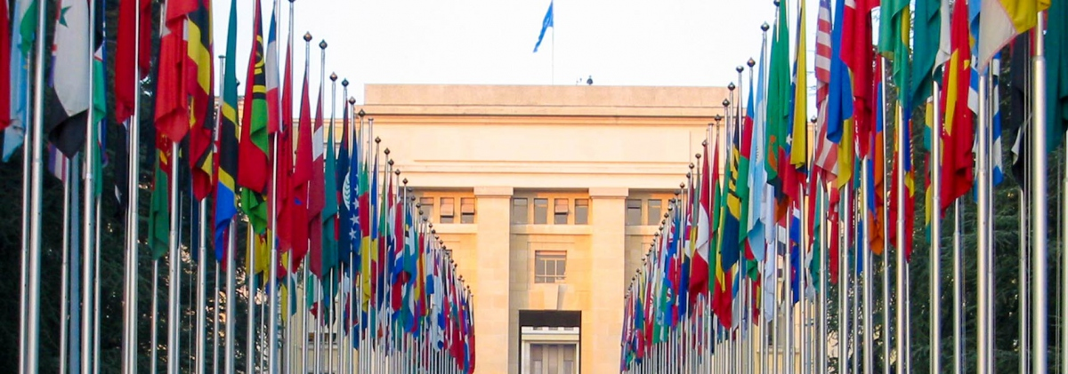 Flags of UN member states stand outside the UN office in Geneva, Switzerland.