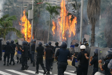 Trees set on fire by opposition students