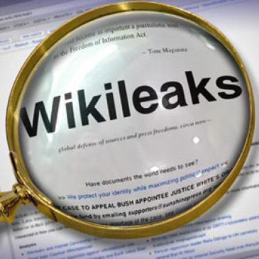Wikileaks is an organization that promotes transparency and democracy by leaking sensitive documents, videos, and other media on matters of social significance, while protecting the anonymity of the sources (archive).