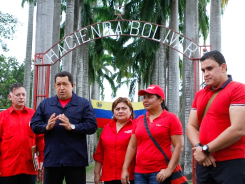 Venezuelan President Hugo Chavez and members of his cabinet during a visit to a recovered farming estate in the western state of Zulia on 13 March 2011.