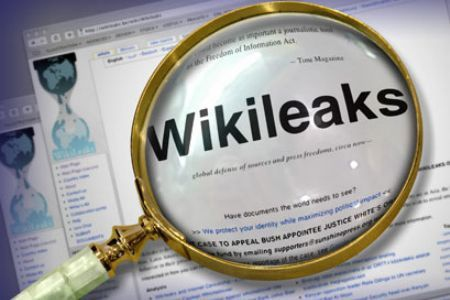 Wikileaks is an organization that promotes transparency and democracy by leaking sensitive documents, videos, and other media on matters of social significance, while protecting the anonymity of its sources (archive).