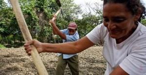 A Venezuelan food co-operative (GLW)