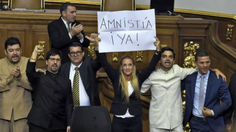 Members of the MUD opposition coalition, including Leopoldo Lopez's wife Lilian Tintori, demand amnesty from the National Assembly (ElUniverso)