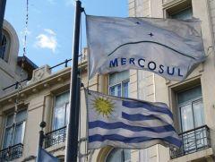 Uruguayan national flag waves alongside Mercosur's  official flag. (MercoPress)