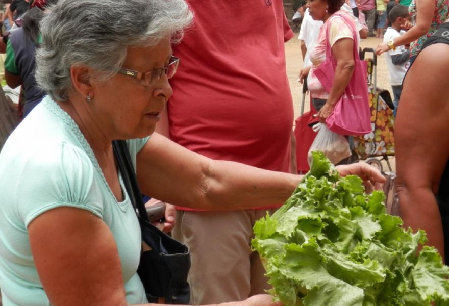 Pueblo a Pueblo food distribution event in El Valle, Caracas. (Christina Schiavoni)
