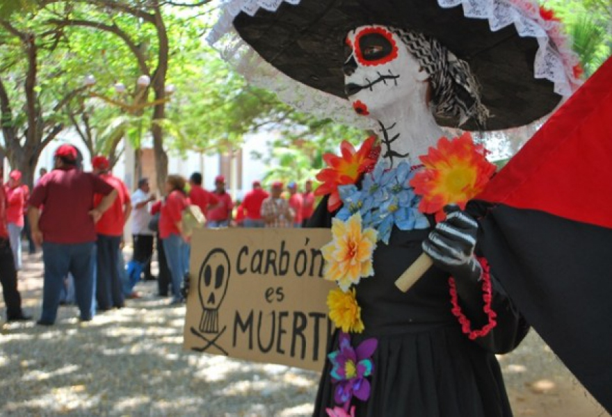 "Woman protests the 1606 Decree in Maracaibo, Venezuela on March 23rd, 2015. Sign reads ""Carbon is Death"" (Provea)"